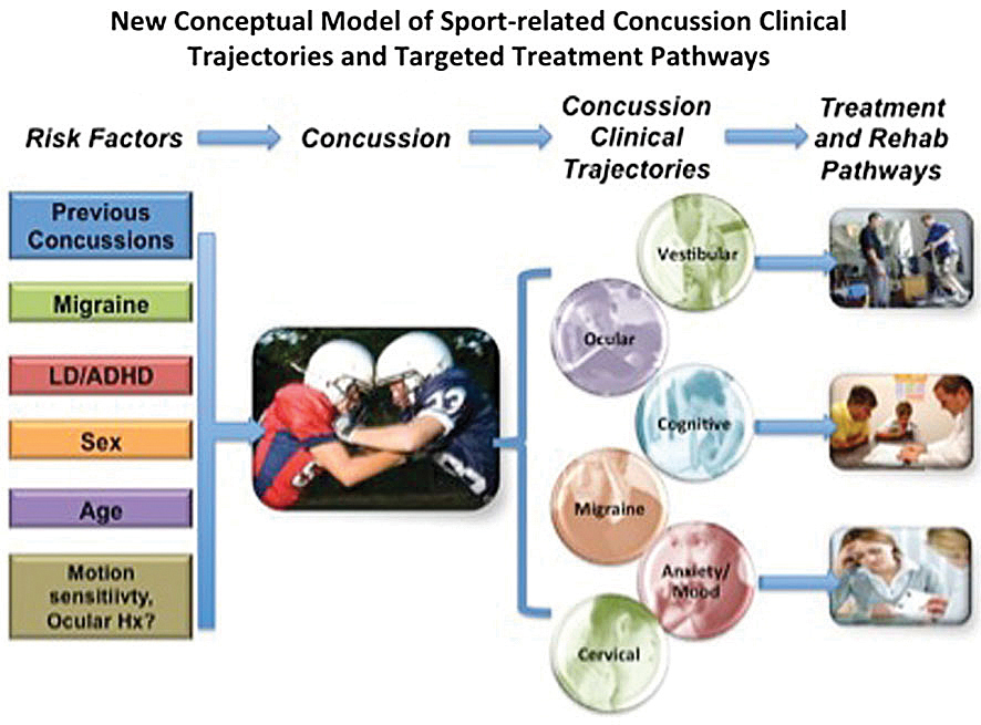 Journal of Lancaster General Health - Strategies for Post-Concussion