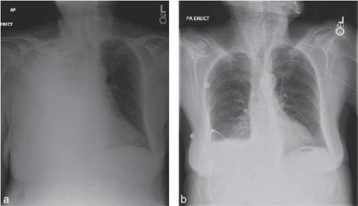 Journal of Lancaster General Health - Imaging Insights